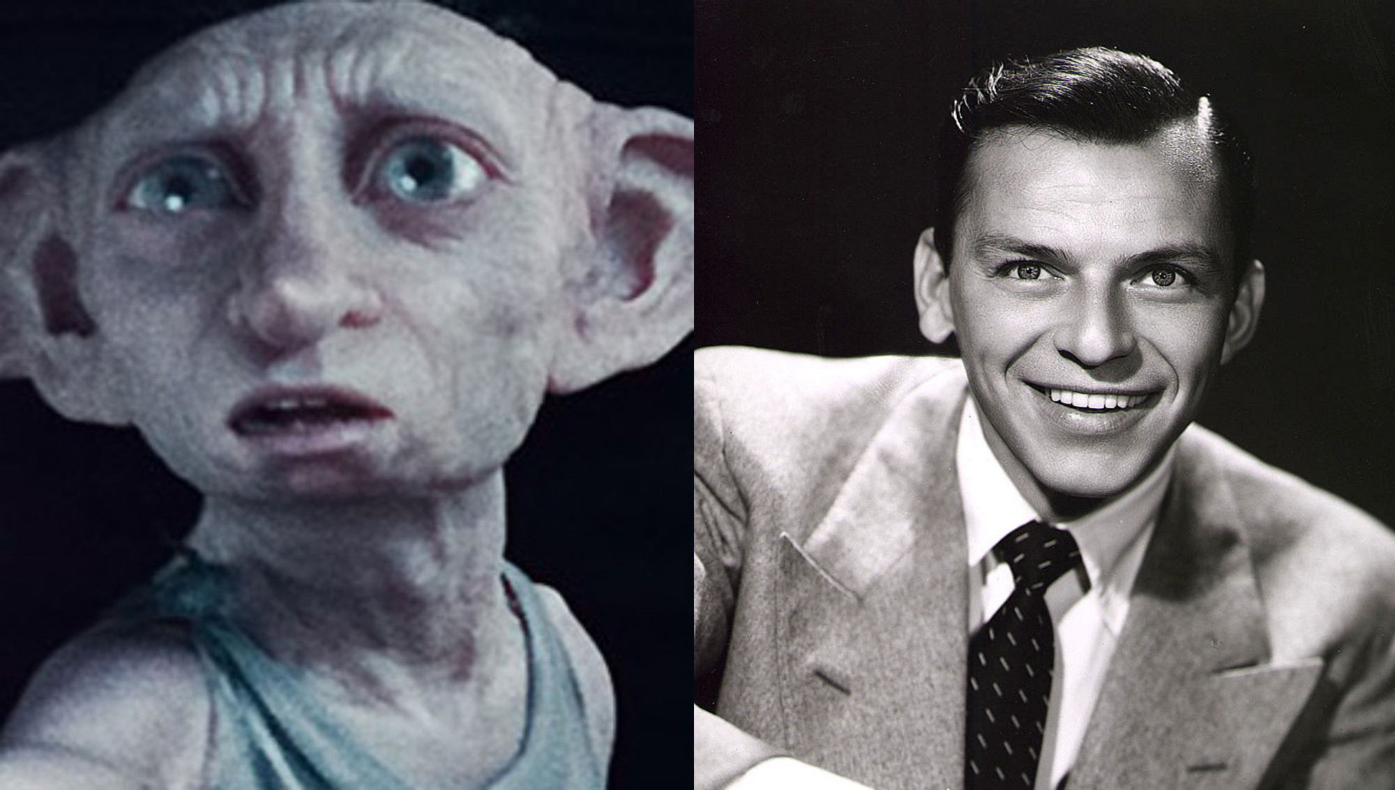 Sorry In Advance, But The Only Two Results On This 'Which Harry Potter Character Are You?' Quiz Are Dobby And Frank Sinatra